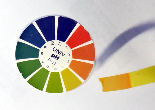 26PH試験紙による洗剤のPH測.jpg